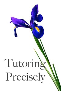 Tutoring Precisely iris logo